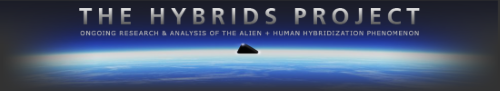 The Hybrids Project - Le Projet Hybrides (En-Fr) 2